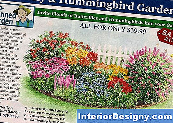 Hummingbird & Butterfly Garden Plans