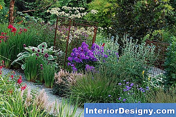 Sunny Flower Bed Planning