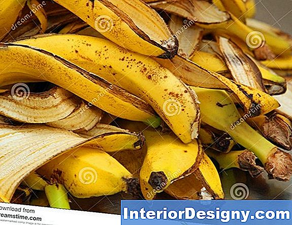 Banana Peels Viljakas Apple Tree