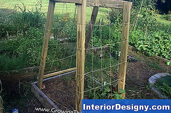 Diy Melon Trellis