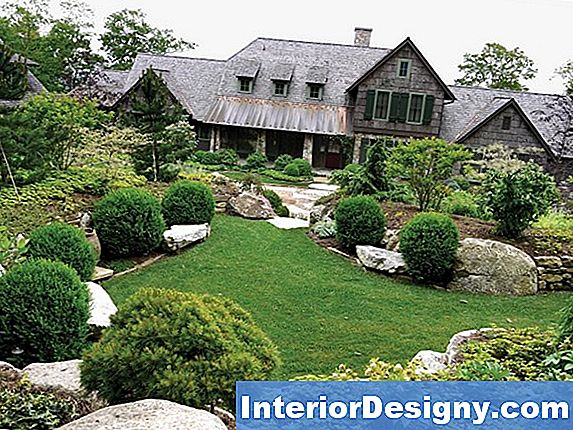Landscape Design With Pine & Grasses